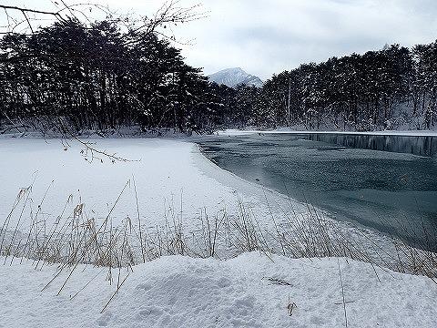20170120毘沙門沼 (128)